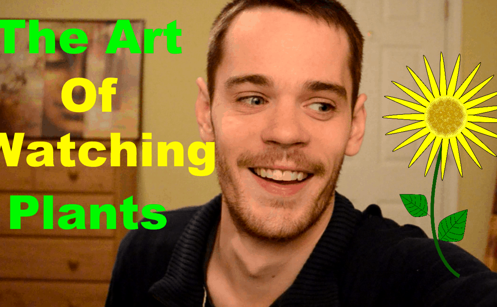 The Art of Watching Plants