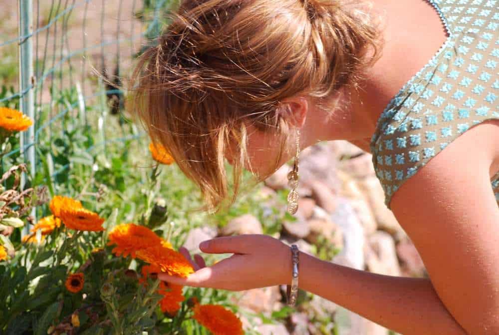 Nature Awareness Orange