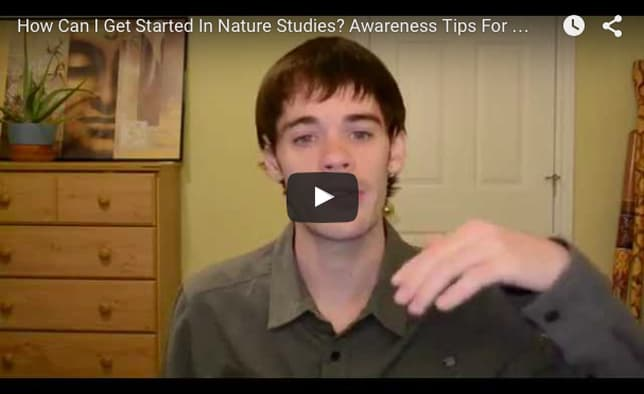 How To Get Started In Nature Studies