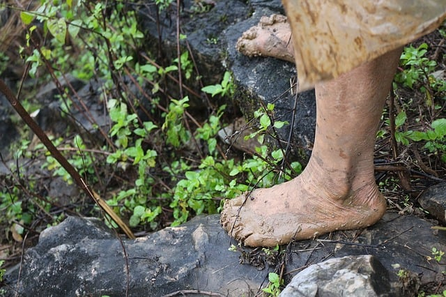 barefoot walking in forest