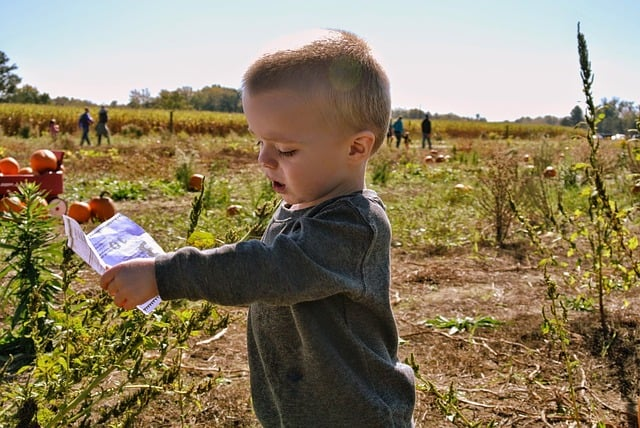 7 Tips For Connecting Children With Nature