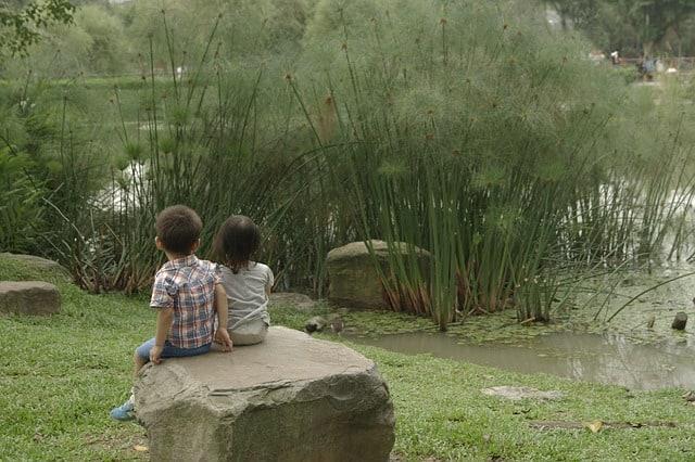 Kids Sit Spot Pond