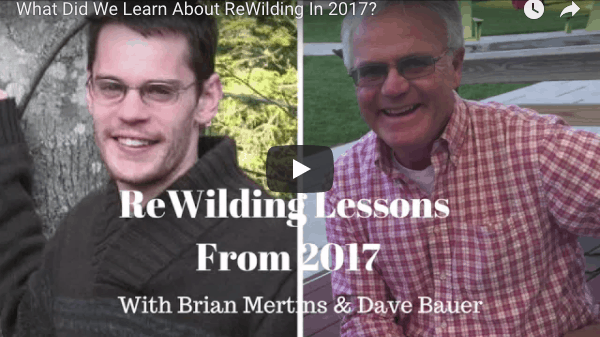 What Dave & Brian Learned About ReWilding In 2017